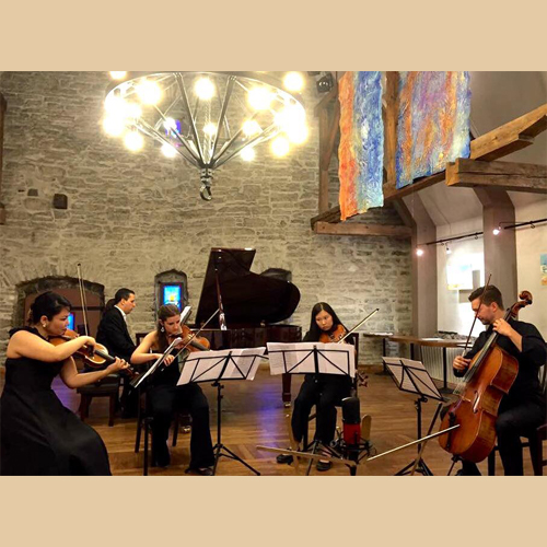 summer music program chamber music